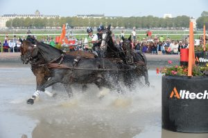 Boyd Exell competing in the driving marathon at WEG 2014