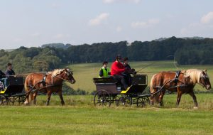 Marlborough Downs for disabled communities 2
