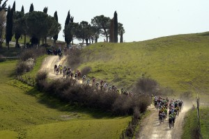 The peloton kicks up the dust as it winds it's way through Tuscany