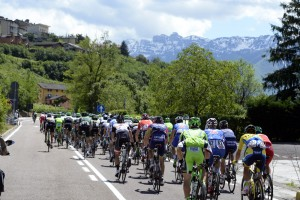The peloton on stage seventeen of the 2014 Giro d'Italia