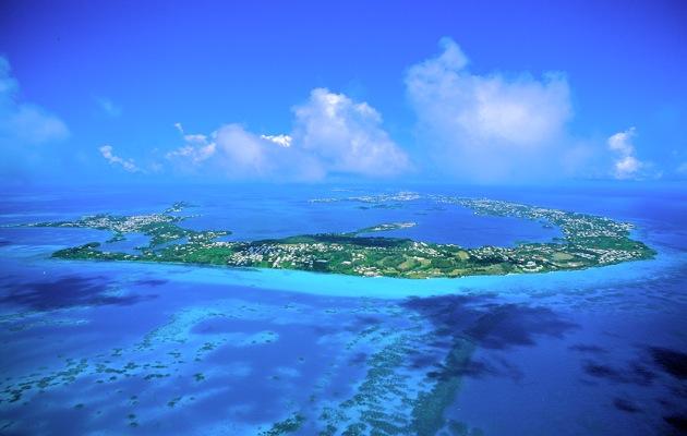 Bermuda copy