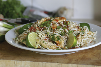 Crunchy sesame noodles and lime salad with chicken