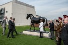 Sefton is admired by the Princess Royal with sculptor Camilla Le May