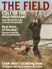 The Field's November 2014 cover