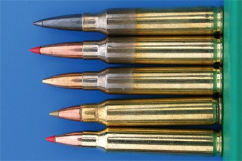 223 Remington cartridges bullets.jpg