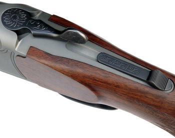 Blaser Model B95 Standard rifle main.jpg