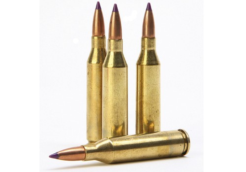 .243 rifle bullets