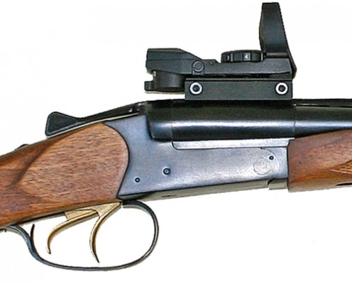 Baikal MP-221 .45-70 double rifle main.jpg