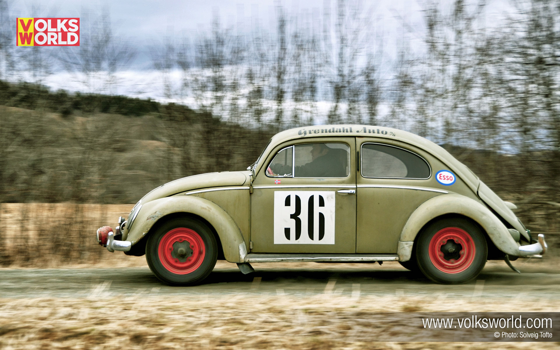 1952 split window vw beetle desktop wallpaper volksworld for 1952 split window vw bug