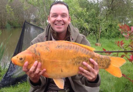 Fish caught at bearley lakes yeovil somerset angler 39 s mail for Koi 313 somerset