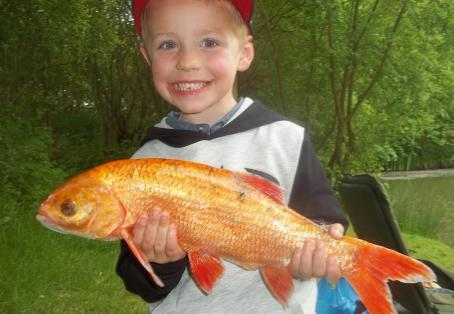 Koi carp: Taylor Harris was'nt Koi about his 1st fishing trip
