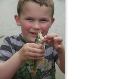Roach: Boyd's first fish