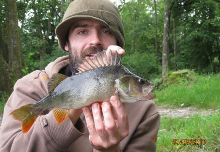 Roach: esthwaite perch