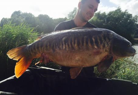 Linear mirror carp: Personal best what a stunner