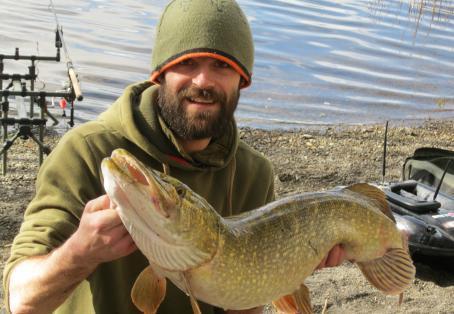 Pike: lakeland predator
