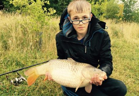 Common carp: Decent common