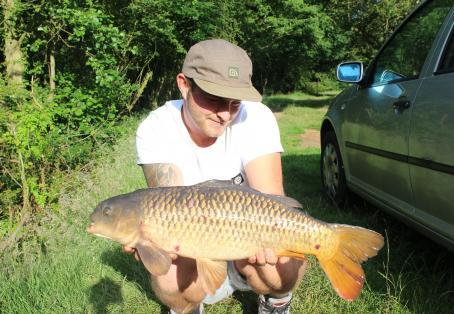 Common carp: 12lb river severn common