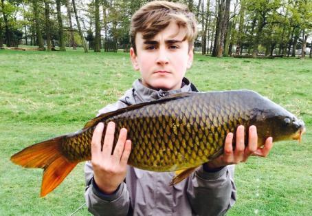 Common carp: 15 lb stalked on free line  Kyle Whitesmith
