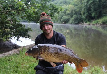 Common carp: River severn 20lb common