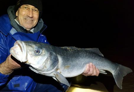 Sea bass: 10lb 4oz Bass from Dymchurch Beach