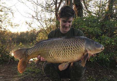 Common carp: Another one to the collection