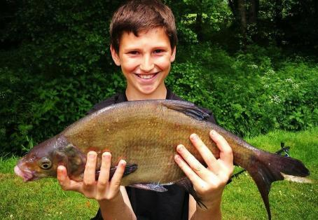 Bream: Max aged 11, lovely Bream