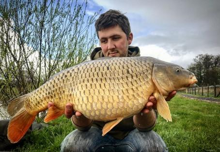 Common carp: Reece jones