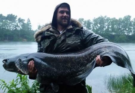 Cat fish: Phil's craven  big whopper beat pb caught 3 times