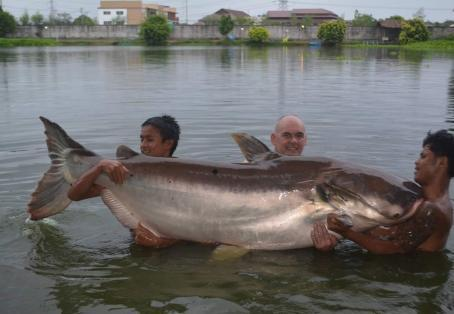 Non-UK species: Micky Quayle with new PB Mekong Catfish 380 lb