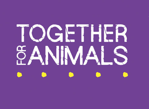 Assisi Charity Consortium Renamed Together For Animals