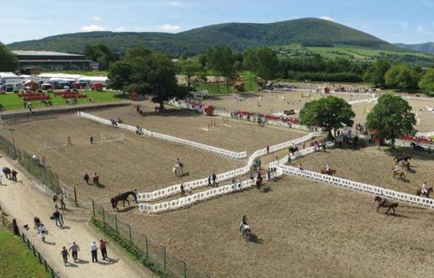 Ireland Wins Bid To Host 2014 European Pony Championships