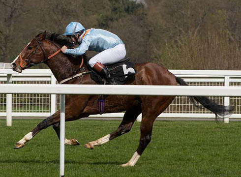Wiltshire Master Wins Ascot Race For Repeal Horse Amp Hound