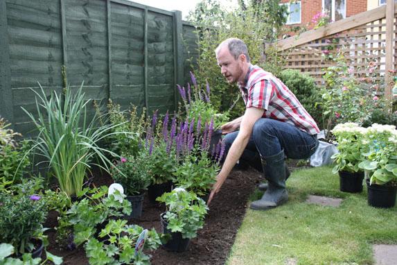 Ten Top Tips For Small Shady Urban Gardens: Top 10 Perennials For Borders