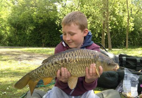 Fully-scaled mirror carp: William's fully scaled