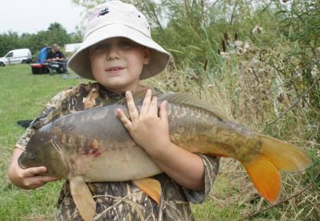 Mirror carp: big carp