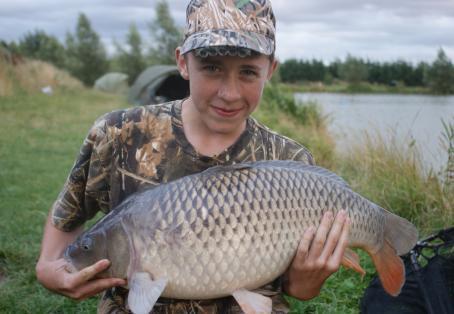 Common carp: nice carp