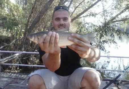 Common nase: Common nase 1 Kg / 2LB caught @ Maritsa river