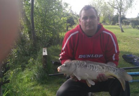 Mirror carp: nice larton livery carp