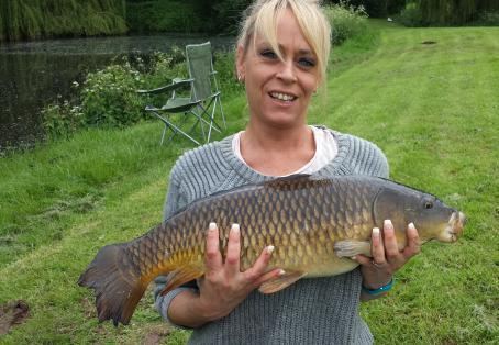 Common carp: Like my carp?