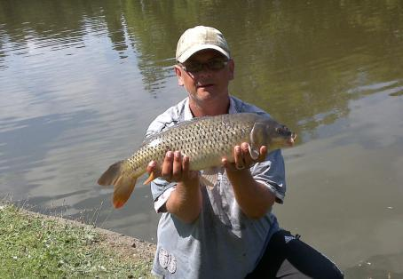 Common carp: braunstone fishing club