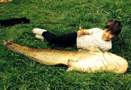 Catfish: Beginners luck catfish!