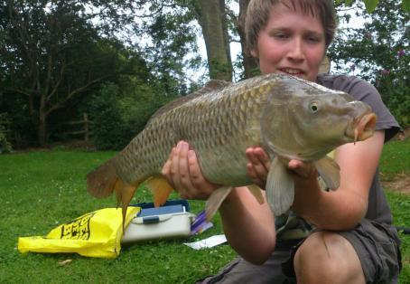 Common carp: common carp