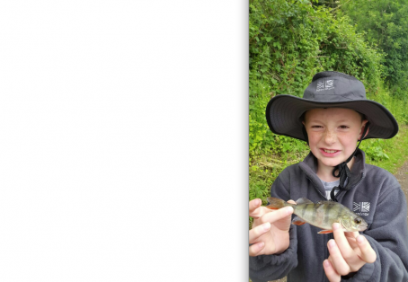 Perch: First fish my son ever caught