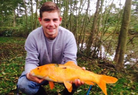 Koi carp: One of my favourite catches
