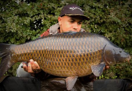 Common carp: Pick Cottage Stunner