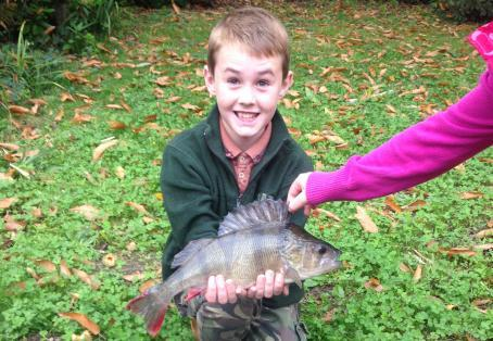 Rainbow trout: First fishing session