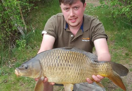 Common carp: Stunning