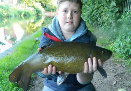 Tench: summer canal tench !