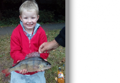 Perch: Conor age 7 pb perch 2lb 8oz