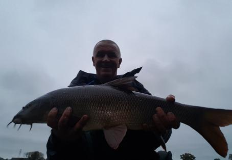 Barbel: Ribble barbel